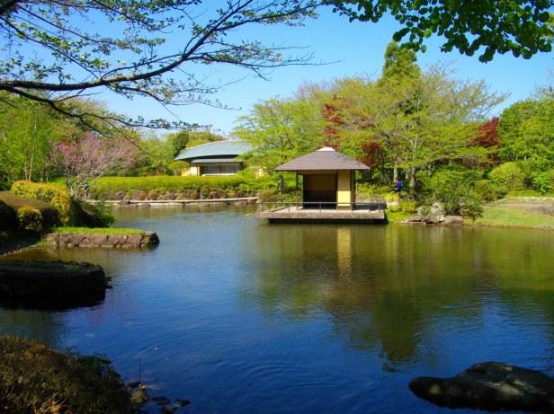 Kashiwanoha_Park_Makigahara-en