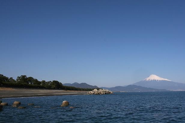 Mt_Fuji_at_Mihonomatsubara